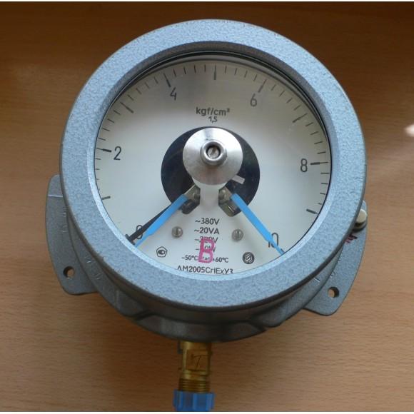 Манометр электроконтактный, взрывозащищенный ДМ2005Сг1Ех (ДМ-2005Сг1Ех, ДМ 2005Сг1Ех, ДМ2005-Сг1Ех)
