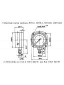 Манометр фланцевый МТП-2М (МТП-2, МТП2М, МТП 2М, МТП) - радиальный штуцер (РШ)